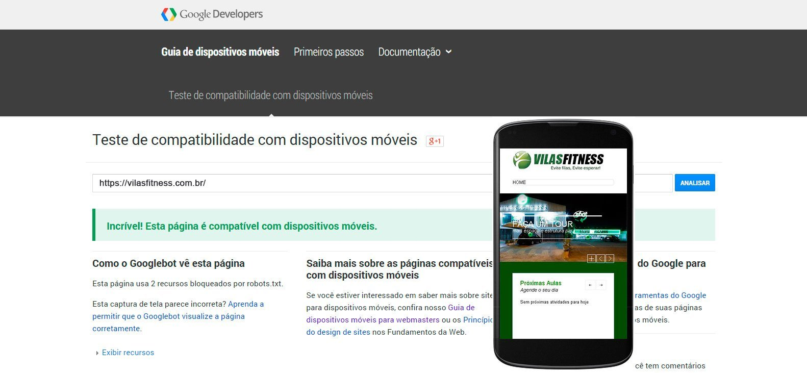 Google Mobile Friendly Vilas Fitness