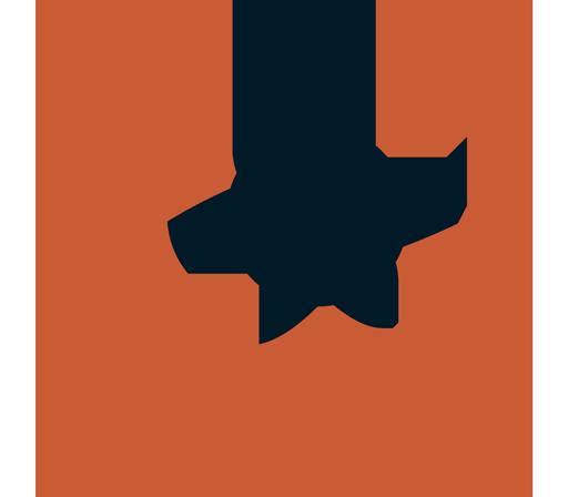 Hospedagem com CDN integrado